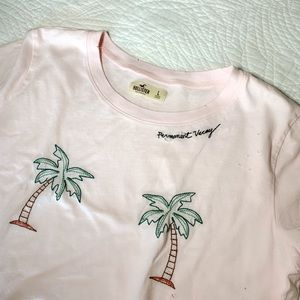 Embroidered Hollister Crop Top